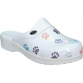 Nursing Clogs for Veterinary Sweet11